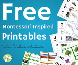 MBN Free Printables 300x250 (2)