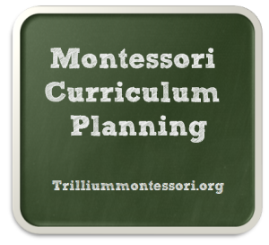 Montessori Curriculum Planning by Trillium Montessori on MontessoriBloggersNetwork.com