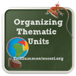Organizing Thematic Units - MontessoriBloggersNetwork.com