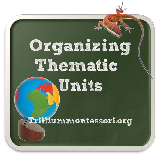 Organizing Thematic Units and Seasonal Supplies